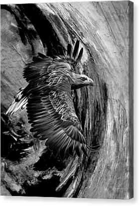Flight For Freedom Black And White Canvas Print by Georgiana Romanovna