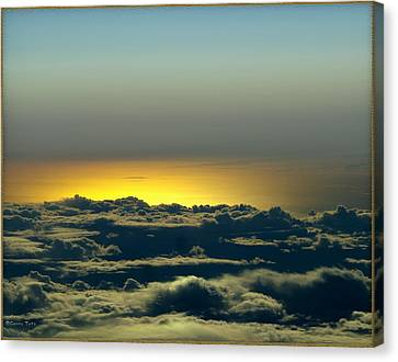 Flight Canvas Print by Gerry Tetz