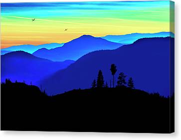 Canvas Print featuring the photograph Flight Of Fancy by John Poon