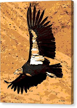 Flight Of The Condor Canvas Print by George Pedro