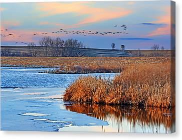 Flight - Walnut Creek Lake Canvas Print