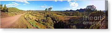 Flinders Ranges Canvas Print by Bill Robinson