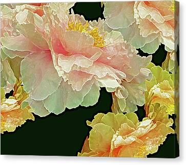 Floating Bouquet 31 Canvas Print by Lynda Lehmann