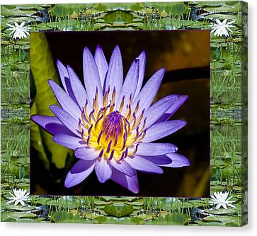Canvas Print featuring the photograph Floating Lilac by Bell And Todd