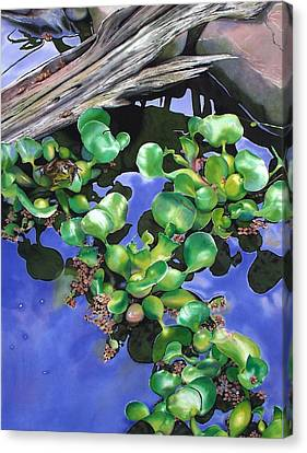 Floating Lilacs Canvas Print by Denny Bond