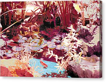 Floating Lilies Pads Above The Koi. Canvas Print by Judy Loper
