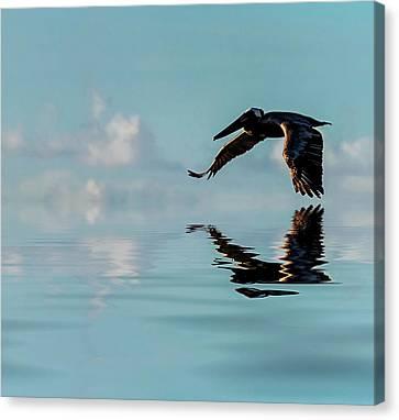 Floating On Air Canvas Print by Cyndy Doty