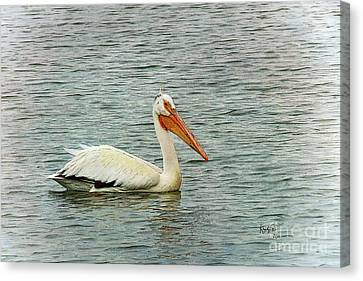 Floating Pelican Canvas Print by Krista-
