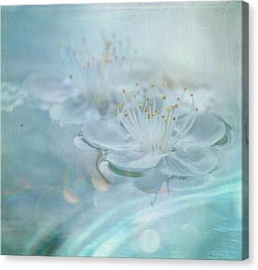 Floating Canvas Print by Sue Harley