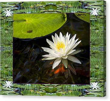 Canvas Print featuring the photograph Floating White by Bell And Todd
