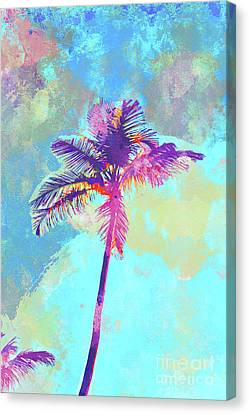 Beach Chair Canvas Print - Floirda Palm by Chris Andruskiewicz