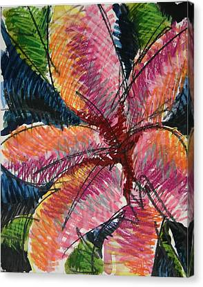 Flora Exotica 3 Canvas Print by Dodd Holsapple