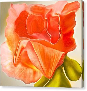 Flora Vita Bella Canvas Print by Robert OP Parrish