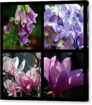 Floral Beauties Canvas Print by Susanne Van Hulst