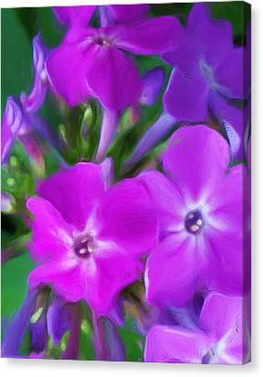 Floral Expression 2 021911 Canvas Print by David Lane