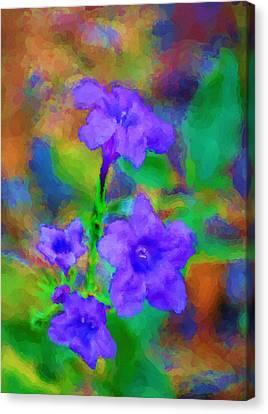 Floral Expression Canvas Print by David Lane