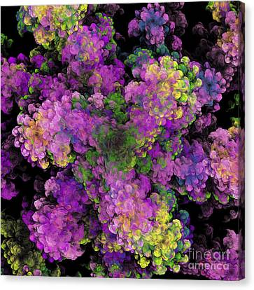 Floral Fancy Abstract Canvas Print by Andee Design