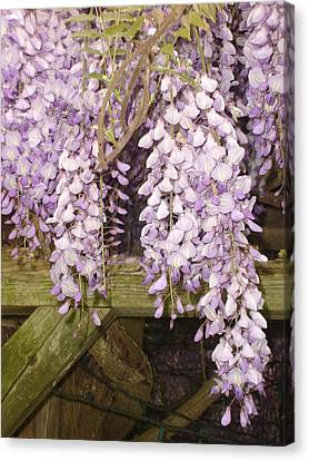 Floral Gate Canvas Print