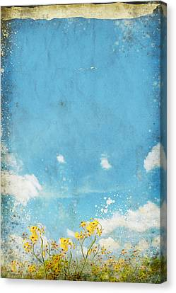 Aging Canvas Print - Floral In Blue Sky And Cloud by Setsiri Silapasuwanchai