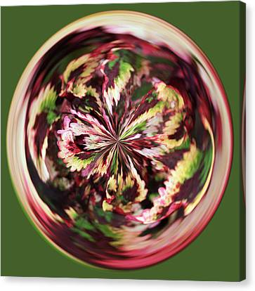Canvas Print featuring the photograph Floral Orb by Bill Barber