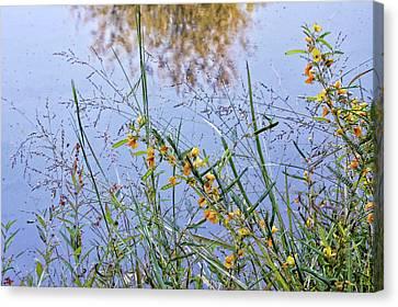 Floral Pond  Canvas Print