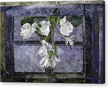 Canvas Print featuring the photograph Floral Window Frame by Bonnie Willis
