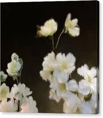 Floral11 Canvas Print