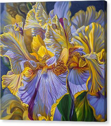 Floralscape 2 - Mauve And Yellow Irises 1 Canvas Print