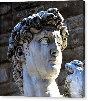 Florence, Italy  David's Head Statue Canvas Print by Barbara Peonio