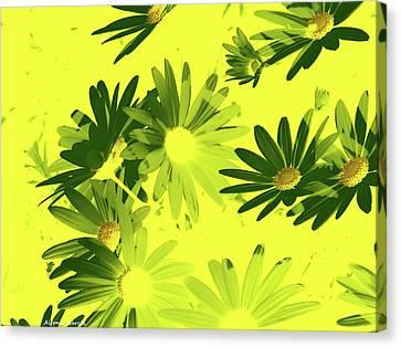 Canvas Print featuring the photograph Flores De Primavera by Alfonso Garcia