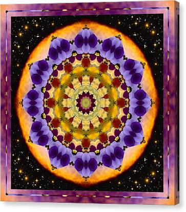 Cosmic Space Canvas Print - Floresence by Bell And Todd
