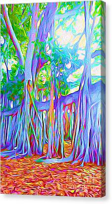 Surf Lifestyle Canvas Print - Florida Banyan Tree II by Chris Andruskiewicz