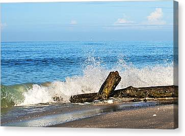 Canvas Print featuring the photograph Florida Beach by Gouzel -