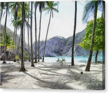 Florida Beach Canvas Print by Murphy Elliott