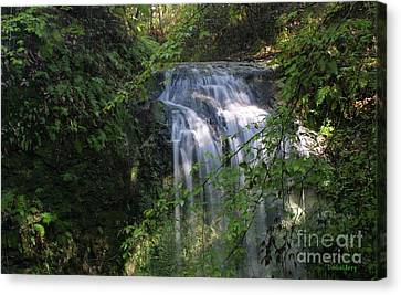 Canvas Print featuring the photograph Florida Falls by Dodie Ulery
