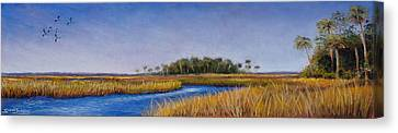 Florida Marsh In June Canvas Print