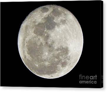 Florida Moon 2-28-2011 Canvas Print by Jack Norton