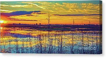 Florida Nature Paradise 2  Canvas Print