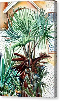 Florida Palm Canvas Print by Mindy Newman