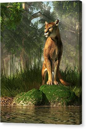 Florida Panther Canvas Print by Daniel Eskridge