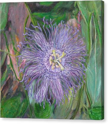 Florida Passion Flower Vine Canvas Print by Patty Weeks
