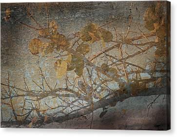Florida Sea Grape Canvas Print by Joseph G Holland