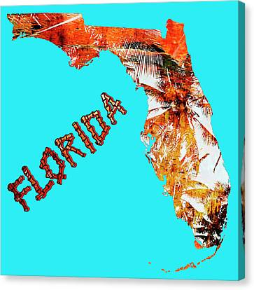 Florida Map Canvas Print by Skip Nall