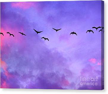 Florida Sky With Sandhill Cranes Canvas Print by Judi Bagwell