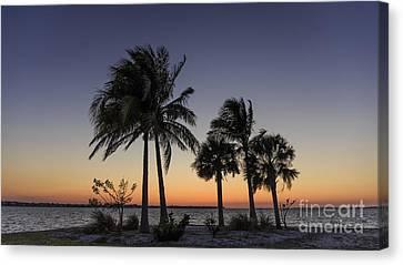 Sanibel Island Canvas Print - Florida Sunset by Edward Fielding