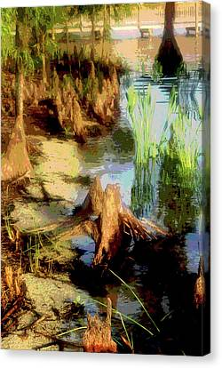 Florida Swamplands Canvas Print by Rianna Stackhouse