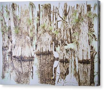 Florida Wildlife Pyrograpgic Portrait By Pigatopia Canvas Print by Shannon Ivins