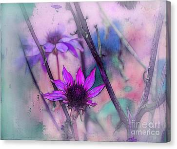 Canvas Print - Florus - A2b3t12c by Variance Collections
