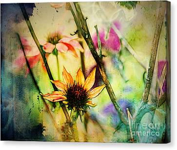 Canvas Print - Florus - A2c5b3 by Variance Collections