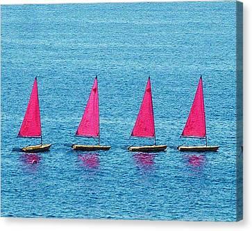 Flotilla Canvas Print by John Bradburn